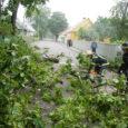 Tormituultes murdnud ning eile mõneks ajaks Kuressaares Uuel tänaval liikluse sulgenud puuoks tekitas kohalikes elanikes küsimuse, miks linn ei kärbi puid. Uuel tänaval olevat mahalangevad puud või suured oksad nende sõnul juba iga-aastane asi.