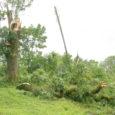 Eile möllanud tuul lõi rivist välja kokku 175 alajaama Saare- ja Hiiumaal, jättes mõneks ajaks elektrita üle 1600 kliendi.