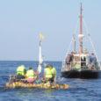 Laupäeval külastasid Ruhnu saart läti noormehed, kes parvetasid saarele kahest kanuust ja võrkpallidest kokkupandud alusega. Omal jõul nad vastutuule tõttu Läti rannikust väga kaugele ei jõudnud ning pukseeriti Ruhnu saatelaeva köie otsas.