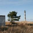 Geoloogiadoktor Kaarel Orviku mõõdistas sellelgi suvel looduses pidevalt oma piirjooni muutvat Harilaidu. Rannajoon on Kiipsaare neemel taganenud keskmiselt kolm meetrit aastas.
