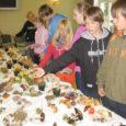Esmaspäeva hommikul sammusid Lümanda lapsed ja õpetajad kooli, käes ämbrid ja karbid nädalavahetusel korjatud tuntud ja tundmatute seentega. Tehti ettevalmistusi kooli seenenäituseks.