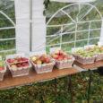 Kõljala külaplats on täna kõigi ubinamaiaste ja õunakasvatajate päralt – toimub kuues õunalaat. Laada korraldaja, Kõljala külaseltsi Kevadine eestvedaja Silje Vaik rääkis Kadi raadio uudistele, et viie tunni jooksul saavad […]