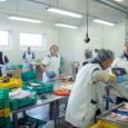 """Viisteist aastat tagasi Nasval tegevust alustanud kalatööstus OÜ Ösel Fish on kaubamärkide Leedevälja ja Saare Hõbe all stabiilselt kalandust edendanud. Lisaks on ettevõttel oma tootmisüksus ka Virtsus. Laiema tähelepanu pälvis Saaremaa traditsioonilise majandusharuga tegelev Ösel Fish OÜ mihklikuus teleekraanile jõudnud ETV saatega """"Tööotsija""""."""