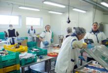 OÜ Ösel Fish edendab kalandust Leedevälja ja Saare Hõbe kaubamärkide all