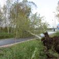 Torm, mille nimi oli Sören ja mille eel anti eelmise töönädala lõpus tormihoiatus, jäi kardetust kesisemaks. Kuid murdis siiski nii mõnelgi pool puid ja põhjustas elektrikatkestusi.