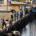 Eile kell 9 hommikul algas kalastuskaartide taotlemine 2015. aastaks üheaegselt nii elektroonsel teel kui ka keskkonnaameti Kuressaare kontoris. Kui esimesel korral, 2011. aastal tõi püügilubade jagamine kaasa meeletud järjekorrad kontori […]