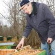 """18-aastase mesinikukogemusega Orissaare valla mehe Taavi Väli tiivuliste toodetud paakspuumesi, mis oktoobri keskel võitis Põlvamaal Kanepi vallas Varbuse mõisas toimunud esimesel üleriigilisel konkursil """"Kuldne maius 2009"""" esikoha, on nõutav kaup nii Saare- kui ka mandrimaal."""
