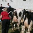 Teisipäeval põllumeeste ja talupidajate esindajatega kohtunud peaminister Taavi Rõivase sõnul on valitsusel Eesti piimatootjate raske olukorra leevenduseks töös vähemalt kolm võtet, millega riik saab piimatootjaid aidata. Need võtted oleksid piimatootjatele […]