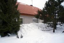 Looduslik katuserookimise teenus