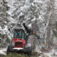 Pihtla valla Sutu metsa Tuulingu maaüksusel ragistas metsamasina operaator või metsameeste keeles harvesterijuht Aivar Aedmaa oma 18-tonnise poolroomik-universaalse Valmetiga 19-hektarisel paksu lumega kaetud künklikul maatükil palgi- ja paberipuid maha võttes, neid järgates ja oksi vaalu tõstes nagu üksik hunt tihnikus.