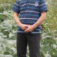 Vaatamata Euroopa Komisjoni otsusele lubada turule geneetiliselt muundatud kartul Amflora, jääb Saaremaa vähemalt esialgu veel geneetiliselt muundatud kultuuride vabaks.