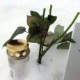 Toidupuudus ja nälg on tänavu ajanud eriliselt palju metsloomi kalmistutele, kus nende elupäästjaks saavad leinavate omaste poolt haudadele toodud lilleõied.