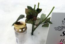Näljased metskitsed söövad haudadele toodud lilli