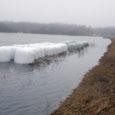 Kuivastu maantee ääres Jõelepa karjamaal võib näha tavapäratut vaatepilti, et talveks karjamaale jäetud silorullid on poolenisti suurvee all. Sarnast pilti kohtab ka mujal Saaremaal.
