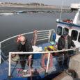 Eile hommikul kell 8.45 väljus Roomassaare sadamast sellel aastal esimest korda mootorlaev Heili, võttes kursi Abrukale.