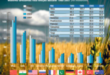 Venemaa edestas USA-d teraviljatoodangu osas