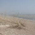 Keskranna rannaala on praegu küll veel pilliroopuhmaid täis ning liivgi on paiguti klibune ja kõva, kuid hiljemalt juuni alguseks lubab Kaarma vald suvitajate meeleheaks ranna korda teha.