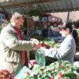 Eestimaa suurimal lillelaadal Türil tänavu külastajate rekordit ei sündinud, ometi jäid kauplejad laadaga rahule, nende hulgas ka Valjala lillekasvataja Jaan Aasel, kes oli üks 760 lilleilupakkujast. Pikk sõit Saaremaalt Eesti kevadpealinna tasus end ettevõtlikule talunikule ära.