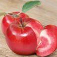 Šveitsi aednikul Markus Kobertil õnnestus ristata õun ja tomat. Tulemuseks on uus punast värvi väga mahlase viljalihaga õunasort.