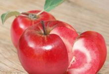 Kurioosum: Šveitsis ristati õun tomatiga