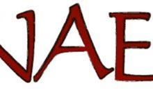 Nael: Viikingite lahingu fonogramm leitud