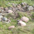 Muinsuskaitseamet sai Võhma küla elanikult läinud pühapäeval teate, et riigi reservmaal asuvat riikliku kaitse all olevat kivikalmet on rüüstatud ja sealt traktoriga kive minema veetud.