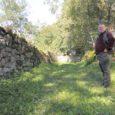 Tänase lehe ajalooküljel jätkame Saaremaa kiviaedade tekke- ja arengulooga. Artikli esimene osa ilmus 18. septembri Saarte Hääles ja selle sissejuhatuses märkis autor, et Saaremaa kiviaedadest kirjutama tõukas teda hiljutine vahejuhtum Mustjala vallas, kus kiviaiamaterjali varujad olid rüüstanud meie teadaolevalt suurima, Võhma kivikalme. Teema on aktuaalne, sest kiviaedade taastamiseks ja ehitamiseks on hakatud toetust maksma.