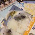 """Kuressaare turismiinfokeskusel on projekti """"Üks puhkus, kaks riiki"""" raames valminud hulk uusi infotrükiseid."""