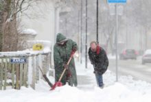 Lumekoristus kui Tatika ja Vesipruuli koeraloopimine