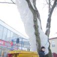 Eile Kuressaares alanud PÖFF-i raames jõudsid linnapilti ka prantsuse kunstniku Bernard Murigneux' valguskonstruktsioonid.