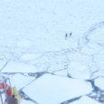 """Eile kell 10.20 Virtsust väljudes märkas parvlaeva Saaremaa vanemtüürimees Indrek Sülla merejääl liikuvaid kitsi. """"Aga peale me neid ei võtnud ja seega kitsed jänest sõita ei saanud,"""" lisas loomi pildistanud tüürimees."""