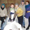 Koolivaheaja viimase nädala kolmapäeval saabus öö Kuressaarde omamoodi salapäraselt. Kesklinna kogunes tasapisi terve suur kamp kohalikke noori, kel kindel siht silme ees – valmistada lumest ja külmast tüdinud kaaslinlastele pisutki rõõmu. Korraldada tööle ruttavatele kuressaarlastele järgmiseks hommikuks selline kena üllatus, mis suunurgad tusasele talveilmale vaatamata ehk veidigi ülespoole kergitaks.