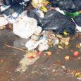 Aasta alguses Kuressaares käivitunud biolagunevate köögijäätmete eraldi kogumine on küll kenasti käima läinud, kuid linnarahva seas leidub neidki, kes nurisevad, et jäätmeid ei kogune konteinerisse piisavalt ja maksta tuleb seega pooltäis tünni tühjendamise eest.
