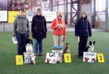 Saaremaa koerasportlaste edukas nädalavahetus