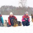 Nädalavahetusel toimus Harjumaal koerteklubi Articus korraldatud Articus Winter Cup'i kuulekuskoolituse võistluste II etapp. Saaremaa koerteklubi Aktiiv võistkond saavutas seitsme hulgas viienda koha.