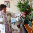 See pole aprillinali. Kuressaares Tuulte Roosi kortermajas on aiandushuviline Asta Vahter saanud hakkama sellise imeteoga, et nopib aprillikuus oma toa kapinurgalt selle aasta esimese küpse maasika.