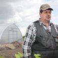 Eeloleval pühapäeval toimub üle Eesti suur avatud talude päev ja nii ka Saare maakonnas. Avatud talude päeva siinse koordinaatori, Saarte koostöökogu nõustaja Sulvi Munga sõnul avavad talud ja farmid oma […]