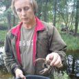 Mullu augustis Riksu ojast avastatud ja meie jõevähkidele äärmiselt ohtlikuks võõrliigiks tunnistatud kiirelt sigivate signaalvähkide väljapüüdmiseks võetakse sel aastal kasutusele nii mõrrad kui ka elekter, kirjutab Eesti Päevaleht.