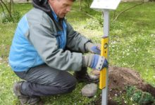 Lossipargi puud saavad infoviidad