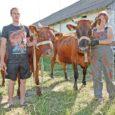 Saaremaa piimatootjaid on taas vallanud iga-aastane suvealguse elevus, sest 15. juunil toimub Upal järjekordne Saarte vissivõistlus.