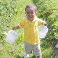 Pärast suviselt kauni Saaremaa looduse imetlemist läbi autoakna ja kõigi nende talude nägemist, mida ekslikult pidasime Kuru mahetaluks, jõudsime lõpuks Kalju küla kõige viimasesse tallu. Nägime hoolitsetud rohelist aeda ja aialaual kausitäit maasikaid, mis mõjusid justkui helge märguandena, et lõpuks oleme õiges kohas. Kuru talu perenaine Eha Kurgpõld tervitas meid sooja naeratusega ning mahetalu tutvustav ringkäik võis alata.