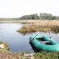 Keskkonnaameti Hiiu-Lääne-Saare regioon kiitis heaks Kaarmise järve saneerimisprojekti keskkonnamõju hindamise aruande, mis võimaldab lähemas tulevikus järve puhastamisega pihta hakata.
