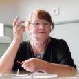 Nüüd juba endise Kuressaare põhikooli ühes klassis istub õpetaja laua taga Ester Kuusik (65). Väljas vahelduvad vihmavalingud ja päikesepaiste, mis endale aeg-ajalt pilku küsivad. Huvitaval kombel on koolimaja aknalauad nii kõrgel, et pingis istudes näed neist vaid taevast. Arvatavasti oli samamoodi siis, kui õpetaja 58 suve tagasi esimese klassi tirtsuna samas majas end aknalaua poole küünitas maailma uudistama.