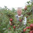 Üllatavalt rikkalikku saaki kannavad sel sügisel OÜ Kadastiku Õunaaed viljapuud Suurna külas Salme vallas. Eile koguti kastidesse mahlatööstuse tarvis ja müüki minevat lauaõuna kokku kolm tonni.