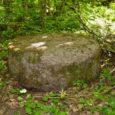 Muhu Pärase Tammemäe hiiest on varastatud haruldane, veskikiviga sarnanev ohvrikivi.