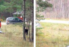 Kraavi sõitnud auto juht ründas ajakirjanikku
