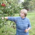 Saaremaa kahest suuremast õunaaiast võetud proovid näitavad, et siinsete õunakasvatajate toodang ei sisalda taimekaitsemürke.