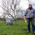 Naabri mesilastelt nõelata saanud elaniku kaebus viis õiguskantsler Indrek Tederi mõttele allutada mesilaste pidamine asulates reeglitele, et mesilased ei häiriks kaaskodanikke.