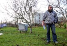 Õiguskantsler tahab mesilased põhiseadust austama panna
