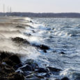 Ilmajaama prognoosi järgi oleksid tuulepuhangud Saaremaal pidanud teisipäeval iiliti ulatuma 28 meetrini sekundis. Õnneks nii valjuks torm seekord ei paisunud. Roomassaare sadamast kinnitati, et tormi tipphetkel puhus tuul seal 17 […]